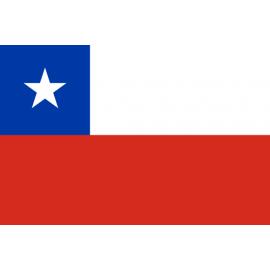 智利 (0)